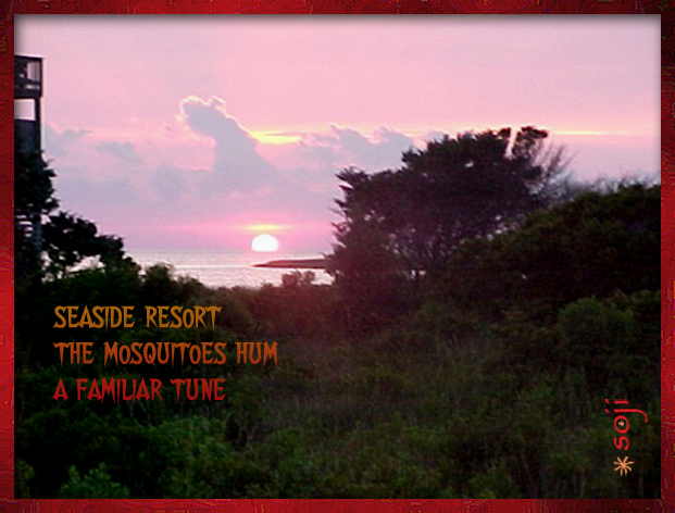seaside-mosquitoes-photo-haiku